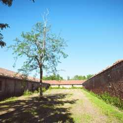 Le mura esterne lungo il perimetro dell'isola. — (Archivio Venipedia/Bazzmann)