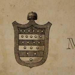 Lo stemma del doge Vitale Michiel II