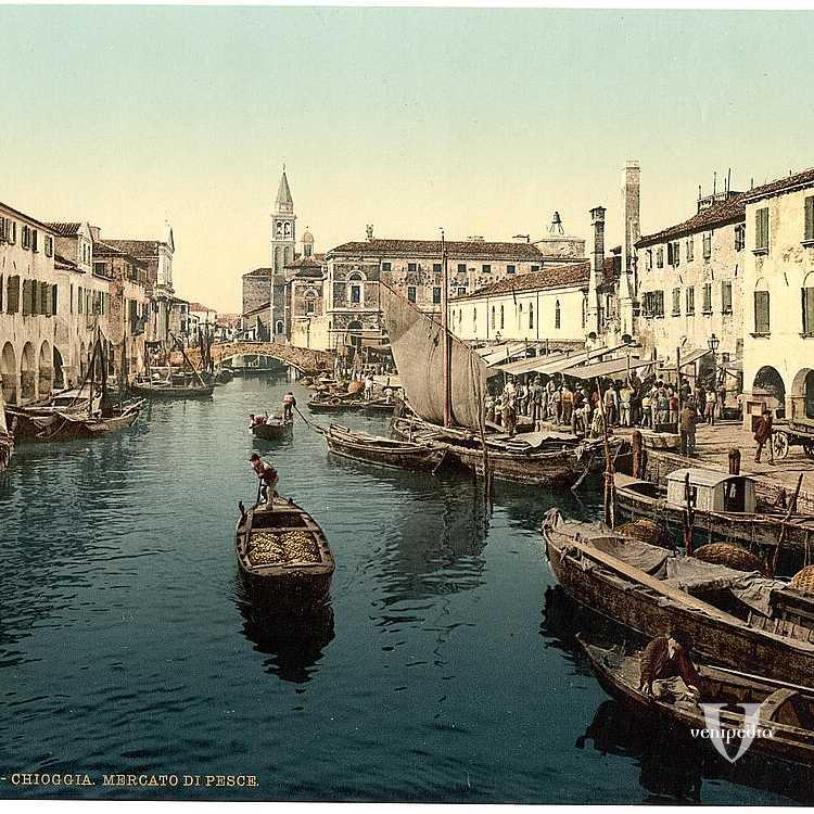 Il rinomato mercato del Pesce a Chioggia, dove poter acquistare ottimi prodotti ittici (Library of Congress - Detroit Publishing Company)
