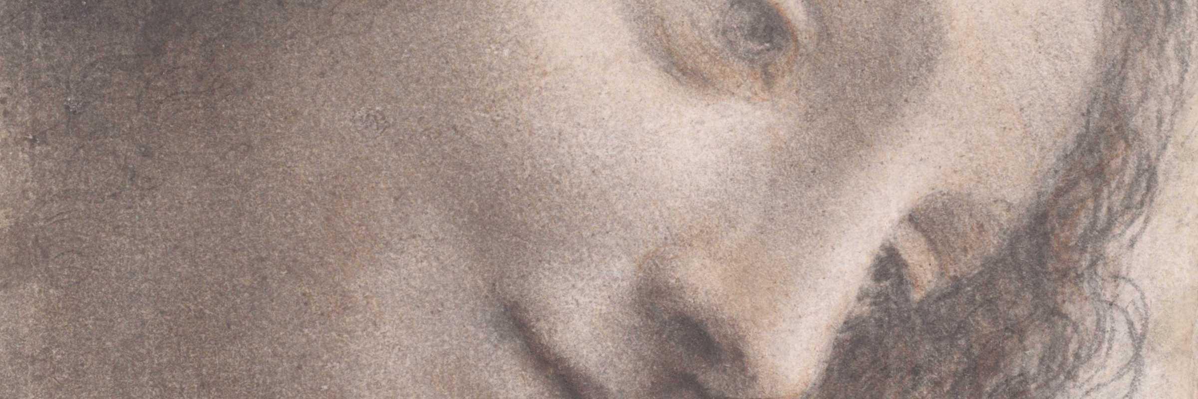 Volto di donna, Leonardo da Vinci — (Metropolitan Museum of New York)