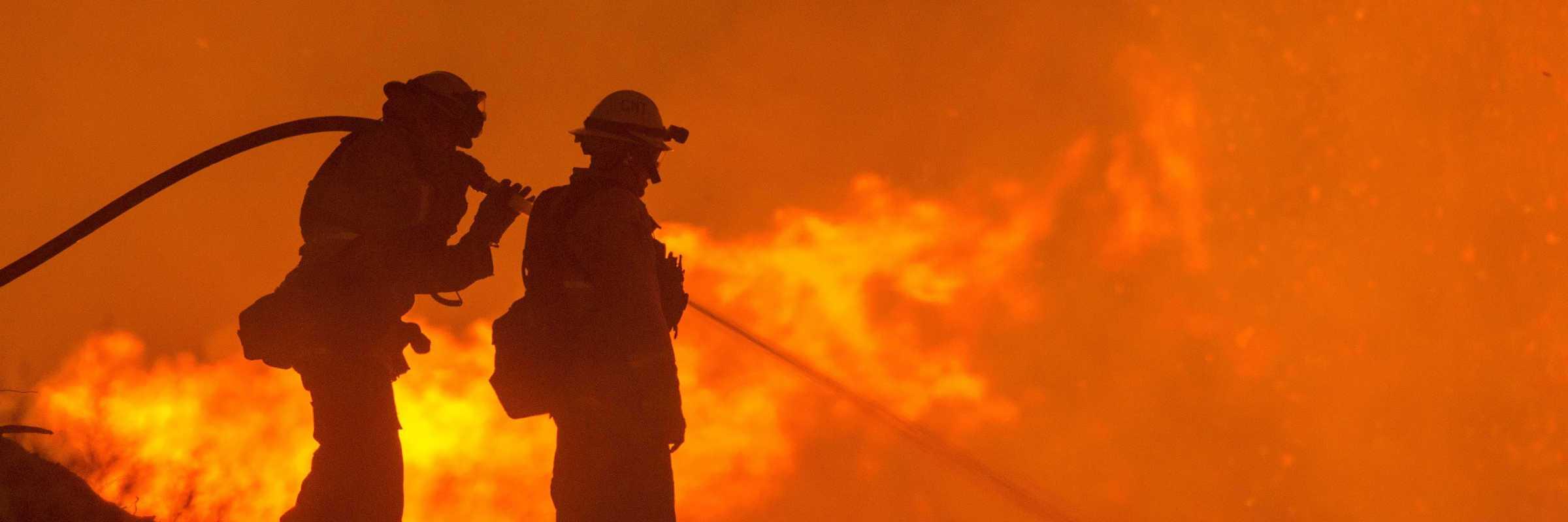 Incendio nella foresta — (Foto di skeeze, da Pixabay)