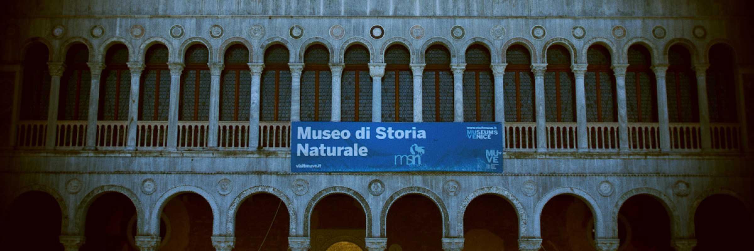 La facciata del Fontego dei Tedeschi, la sede del Museo di Storia Naturale.
