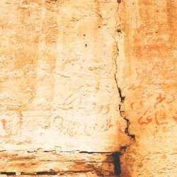 Momenti di vita vissuta sono raccontati attraverso le iscrizioni commerciali all'interno del tézon grando. — (Archivio Venipedia/Bazzmann)