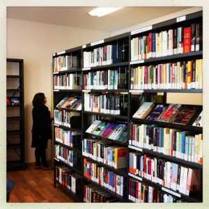 Scaffali di libri presenti nella biblioteca.