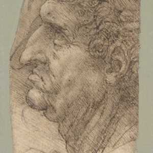 Leonardo da Vinci, 1490–94 —(Per gentile concessione The Metropolitan Museum of Art.)
