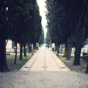 Viale principale dall'entrata storica verso l'interno