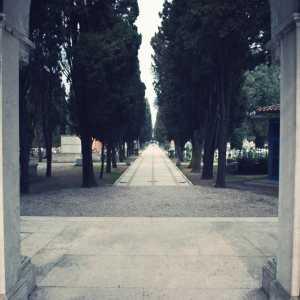 Vista dall'entrata storica verso l'interno