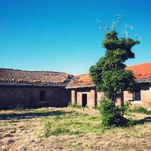 Campo interno. — (Archivio Venipedia/Bazzmann)