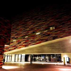 L'accesso al Museo visto da Via Pascoli.