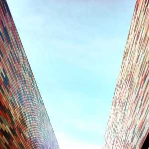 View of the two colored walls, towards the sky.