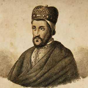 Incisione raffigurante il doge Vitale Michiel II.
